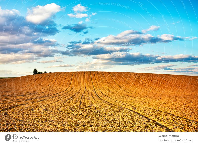 Linear plowed agriculture on hills field land arable rural nature landscape spring farmland furrow dirt soil cultivated background countryside brown season