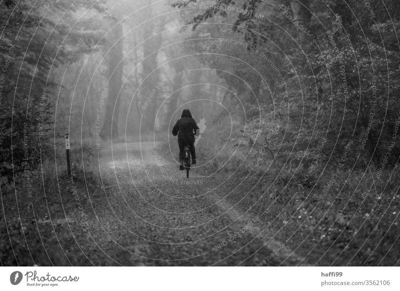 Cycling in the rain in the forest Cyclist cyclists Rain Rainy weather Forest forest path Bad weather rainwear Bicycle Sports Nature people Lifestyle Healthy