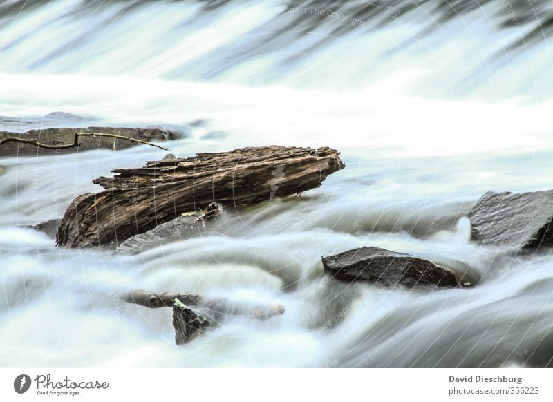 driftwood Vacation & Travel Nature Landscape Water Spring Summer Autumn Beautiful weather Waves Coast River bank Brook Waterfall Blue Brown Black White