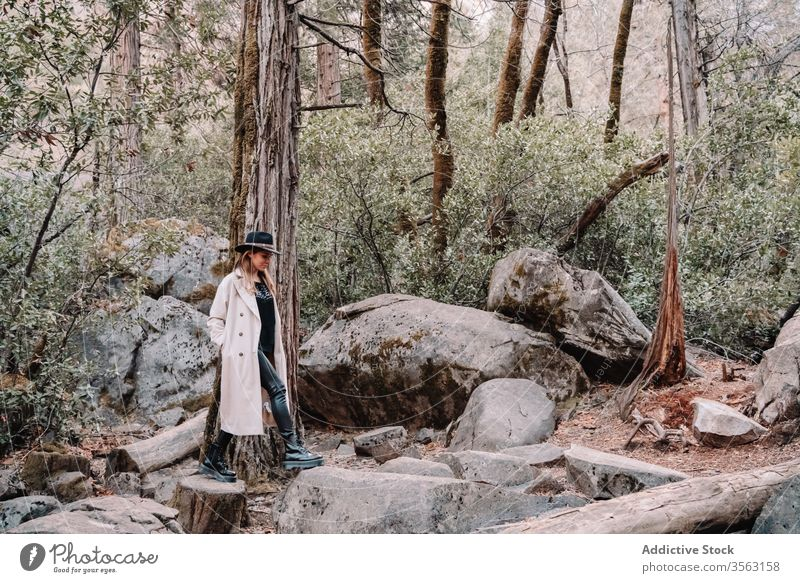 Stylish female traveler standing among stones in forest woman trendy style tree landscape yosemite park mountain rock national scenery california usa america
