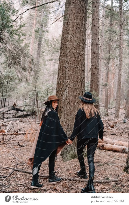 Young female travelers in coniferous forest women tree together friend stone style trendy woods trunk landscape yosemite park sequoia national scenery