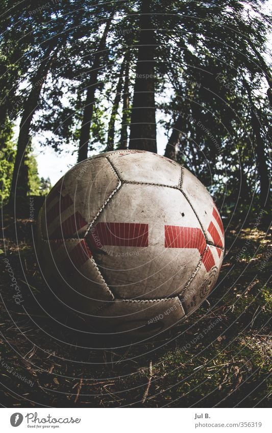 Nature Old Joy Forest Environment Moody Air Foot ball Good Ball