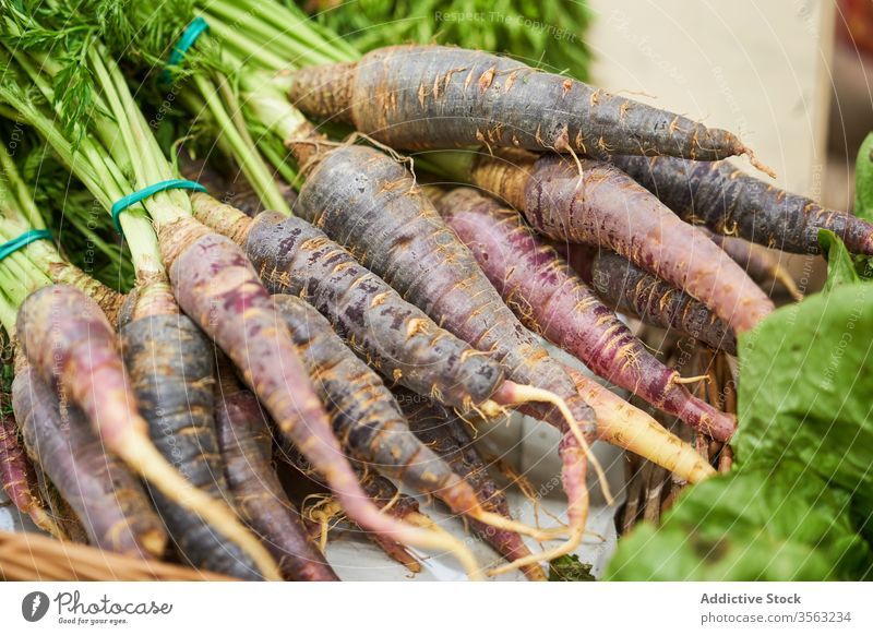 Female hand with radish in hand in a fruit shop root food freshness red agriculture vegetable healthy leaf ingredient raw organic nature summer garden