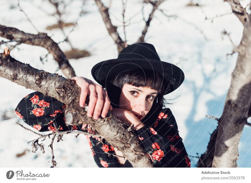 Charming woman in winter garden style fashion beautiful tree park snow hat female young brunette nature trendy calm relax tranquil charming lady attractive