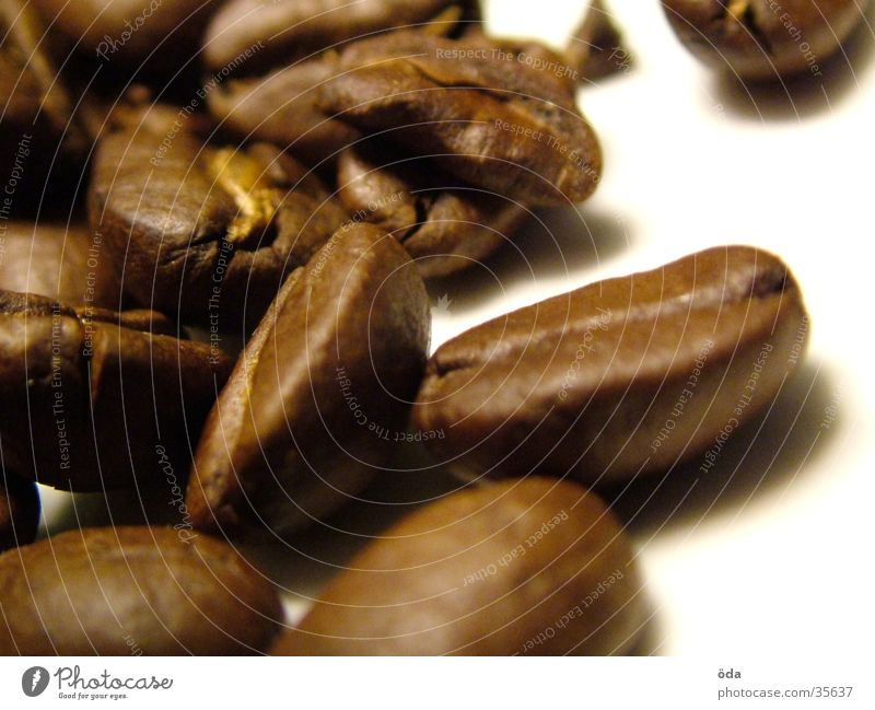 coffee beans Beans Coffee bean Espresso Sense of taste Macro (Extreme close-up) Close-up Aromatic