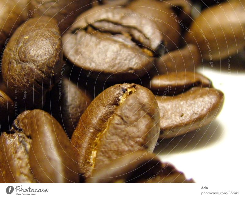 Coffee beans #2 Beans Espresso Sense of taste Macro (Extreme close-up) Close-up Aromatic