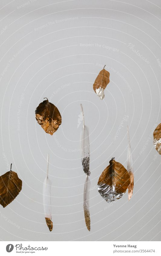 Leaves and feathers float in the air leaves Feather Hover White Colour photo gold edge Silver Gold Flying Floating white background Brown brown leaves Autumn