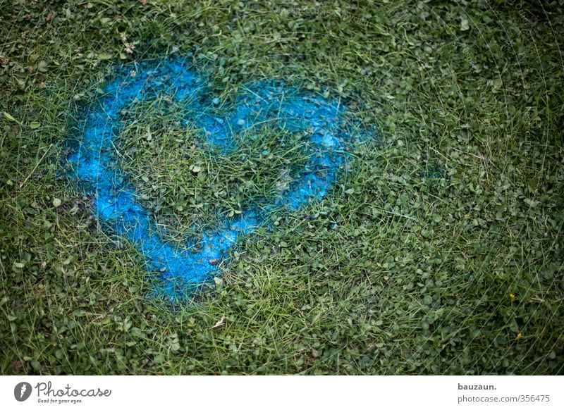 washable. Feasts & Celebrations Valentine's Day Earth Grass Park Meadow Heart Blue Green Love Love affair Transience Destruction Colour photo Exterior shot