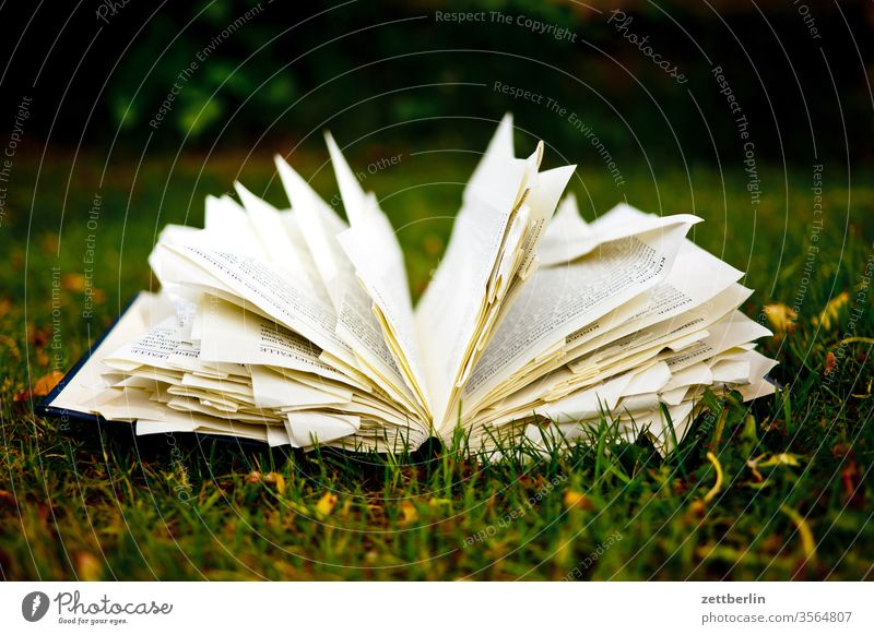 Book on the meadow in the garden Fiction Library Dog-ear Reading Reading matter Bookmark Literature Novel browse Academic studies Garden Meadow Grass Lie