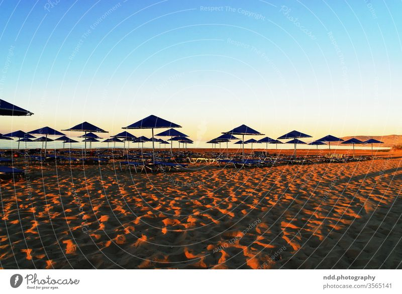 Sunset at the beach Beach vacation Longing void Ocean holidays Vacation mood Relaxation Water Summer Nature Dusk Back-light Horizon Light Sand Waves