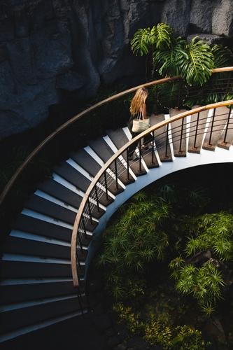 Young woman climbing beautiful stairs with vegetation Stairs up Stone sandstone wall Minimalistic Structures and shapes Pattern Detail Design lines Colour photo