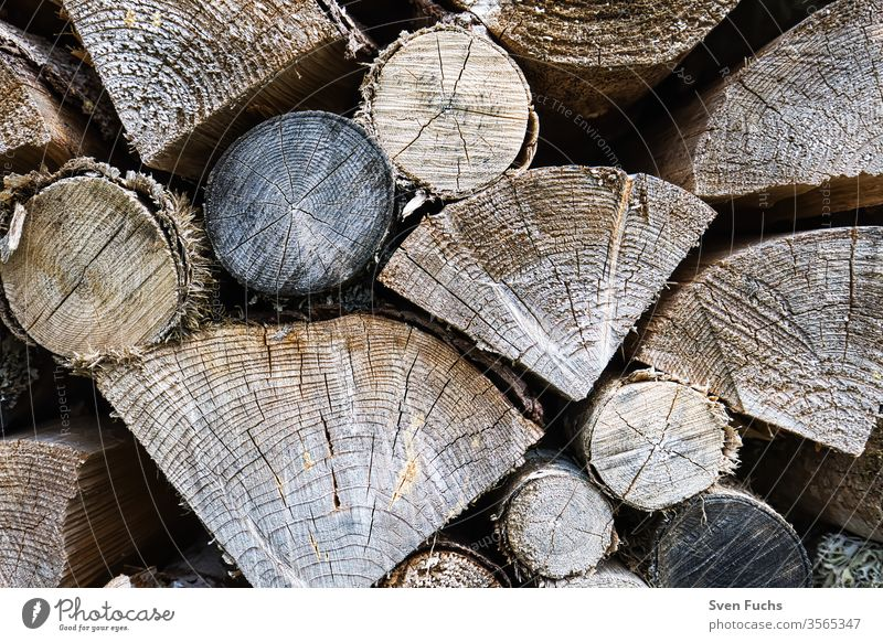 Logs stacked on top of each other along a forest path logs Firewood regenerative energy Renewable energy Natural product resource Round Stacked up round wood