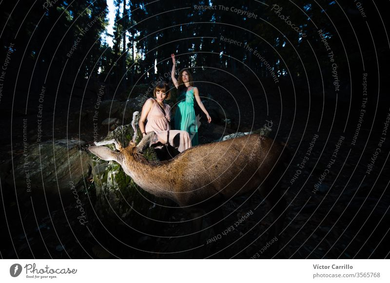 Two beautiful bohemian girls with a deer in a forest background joy park fun leisure pretty cool stylish autumn leaves dress romance country relationship trendy