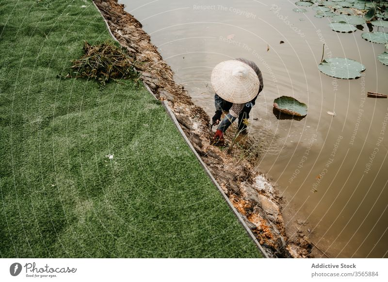Worker in conical hat weeding soil near river worker cultivate person farmer hoe vietnam asia water dirty straw hat garden tool busy nature rural countryside