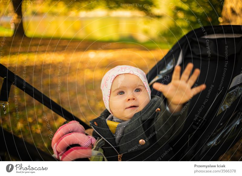 One year old cute baby girl in black strolly amazed to see colorful autumn leaves. Reaching hand out to touch child expression park fall nature mother emotions