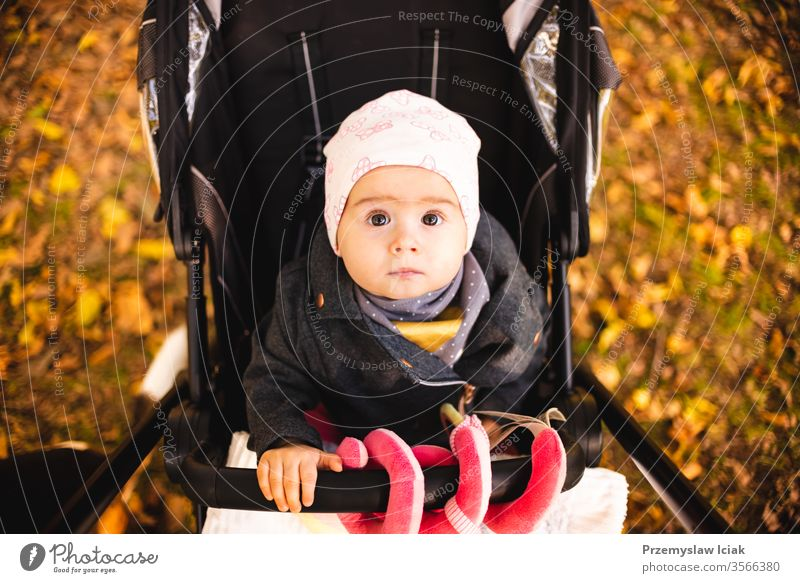 One year old cute baby girl in black strolly amazed to see colorful autumn leaves. child expression park fall nature mother emotions family walk young stroller