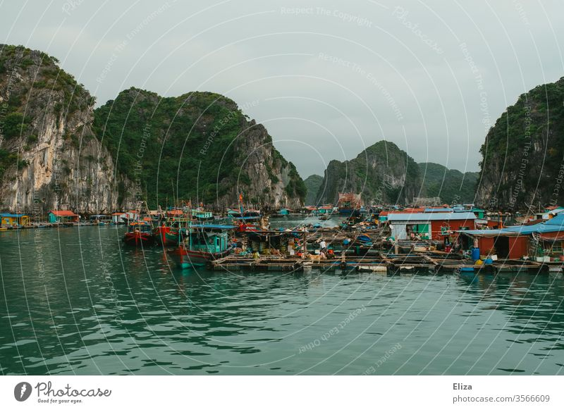 Floating village in the Halong Bay in Vietnam floating village Halong bay Fisherman variegated Life that Water Limestone rocks Ocean Asia Dreary cloudy Tourism