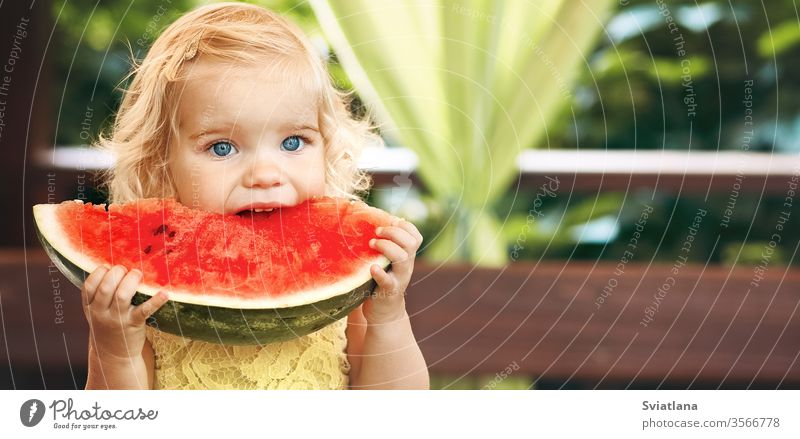 Little blonde girl eating a juicy watermelon in the garden. Children eat fruit on the street. Healthy food for children. Toddler gardening. red healthy slice