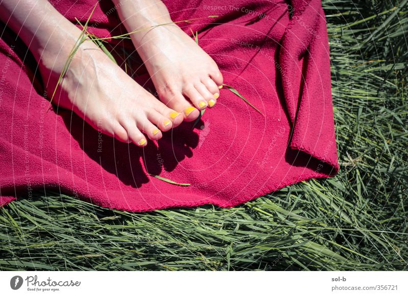 Summer Feet Human being Woman Child Nature Youth (Young adults) Vacation & Travel Summer Red Relaxation Joy Young woman Adults Yellow Feminine 18 - 30 years Grass