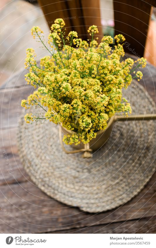 Beautiful yellow wild flowers on the wooden table in the backyard arrangement background beautiful beauty bloom blooming blossom botany bouquet bunch closeup