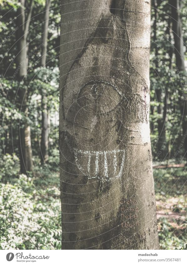 cyclops Eyes Looking tree Nature Tree trunk Face Funny Laughter Grinning portrait Forest Joy Mouth Happiness Colour photo joke