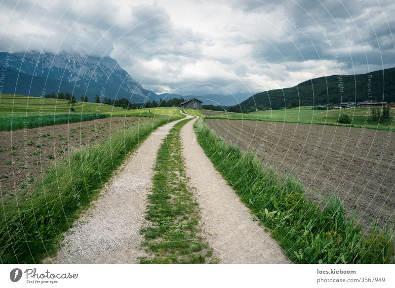Winding path through farmland with Austrian Alps, Mieminger Plateau, Tyrol, Austria agriculture alps landscape austria ecological tyrol field regional nature