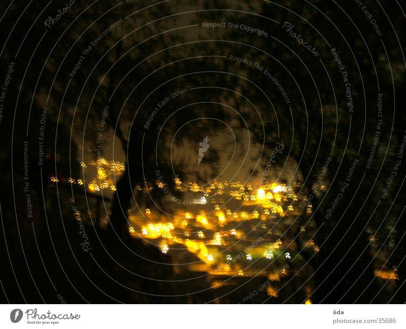 Arco at night #1 Long exposure Sea of light Tree Town Light