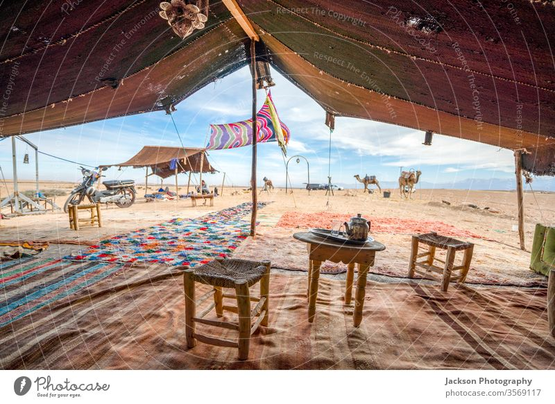 Interior of the temporary stretch tent Bedoiun in the Agafay desert, Morocco House (Residential Structure) Camel Tent inward indoors Animal Glass Tea Chair