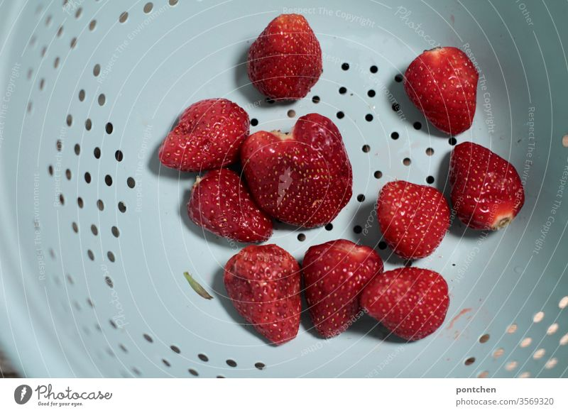 Ten washed strawberries without leaves in a mint coloured drainer. Strawberry drip sieve fruit Healthy Eating Red Mint green Food Fresh Delicious Sweet holes