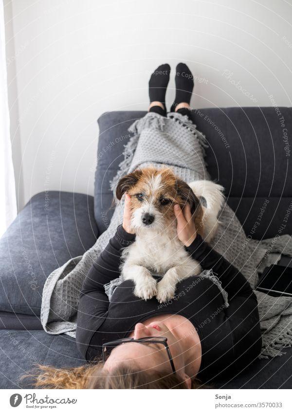 Junge Frau liegt auf dem Rücken und streichelt eine kleinen Terrier Hund auf einem grauen Sofa frau jung streicheln Freundschaft liebe Pet Animal Looking liegen