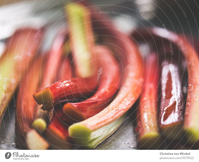 wet shining rhubarb sticks lying side by side, close-up with shallow depth of field Rhubarb Rhubarb Rods Fresh Healthy Eating Nutrition Vegetarian diet Vitamin