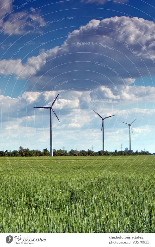 Wind turbines and wheat field Pinwheel windmills wind power Wheatfield Energy Renewable energy Energy industry Colour photo Exterior shot Deserted