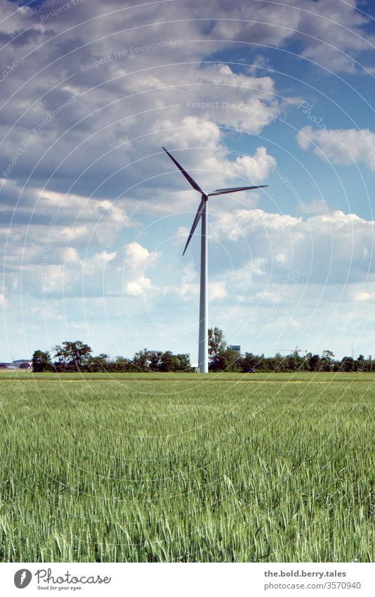 Wind turbine and wheat field Pinwheel Field Wheatfield Wind energy Summer Exterior shot Colour photo Nature Agricultural crop Grain Grain field Deserted Growth