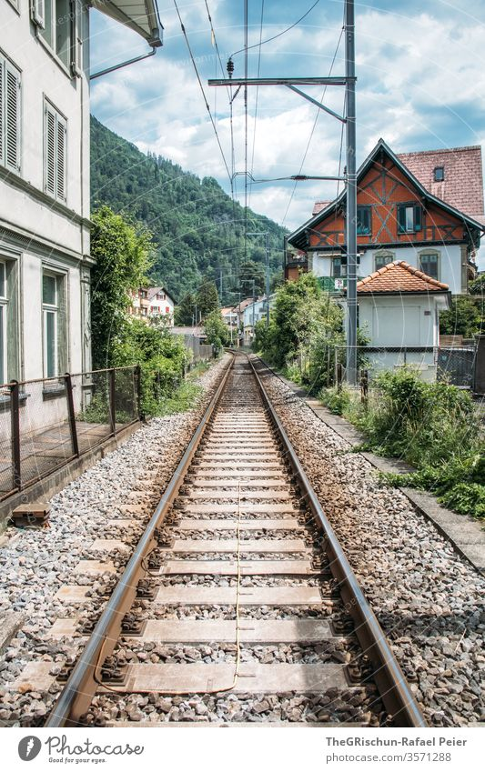 View of a house and train tracks Interlaken Switzerland Tourism tree Exterior shot Colour photo Deserted Day Trip Summer tourist region Train Railroad tracks