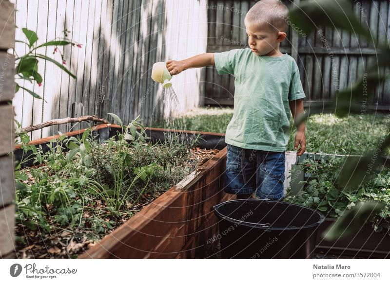 A little boy is watering plants in the garden. Concept of farming and environment protection nature green life soil agriculture small spring young concept new