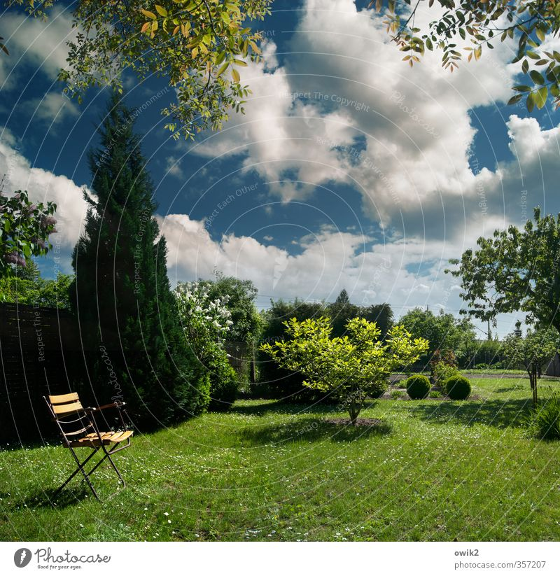 in the garden Environment Nature Landscape Plant Sky Clouds Climate Weather Beautiful weather Tree Grass Bushes Foliage plant Garden Folding chair Garden chair