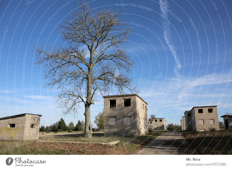 the dead village built House (Residential Structure) Village tree Architecture Ghost town Loneliness Derelict Uninhabited Homeless Escape Small Town Lonely