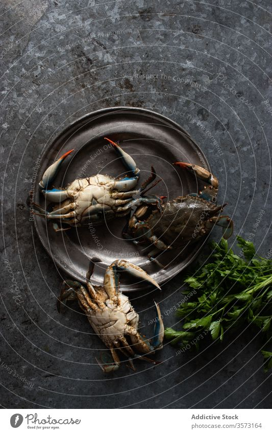 Crabs placed on a metal plate near fresh green parsley crabs dish gastronomy cook marine crabbing gourmet prepared tropical clamps delicious isolated leaves