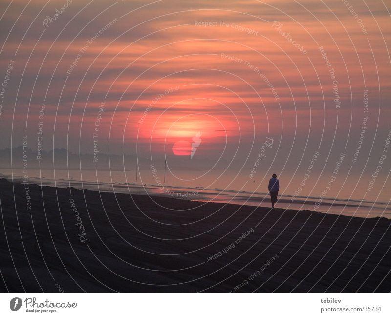 Sun Ocean Beach Clouds Loneliness Dark Sand Bright Stairs Beach dune