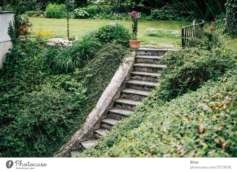 Stairs in the garden leading down a slope to the cellar Garden Cellar Escarpment Handrail Downward Upward green enchanted Nature maintained plants planted great