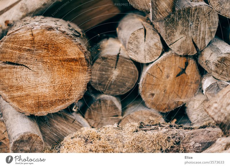 Stacked logs as firewood Supply for heating in winter Logs stacked Brown Firewood Tree trunk Forestry Exterior shot Stack of wood Heat Winter Fuel