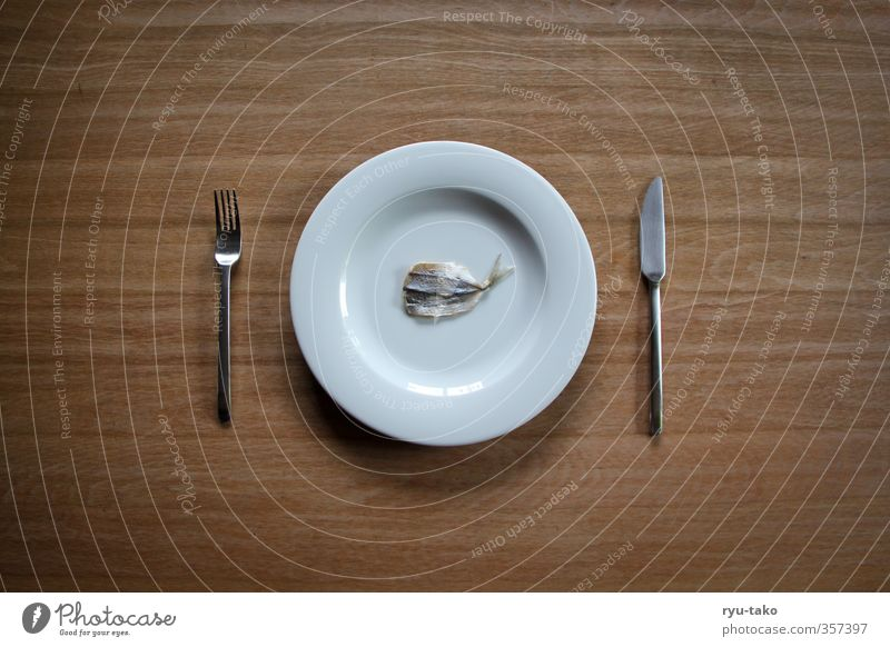 fish with a difference Delicacy Plate Cutlery Fish Exceptional Fine Delicate Delicious Small Minimalistic Dried Colour photo Deserted Copy Space left