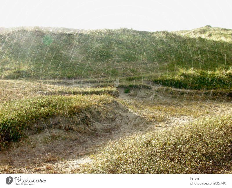 Dunes in the rain in Denmark Beach dune Rain Evening Sand Sun