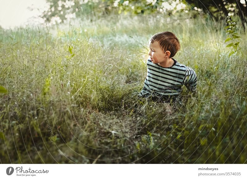 Little boy in a striped sweater sitting in a meadow Boy (child) Child Human being portrait Joy Colour photo Happiness Infancy luck 3 - 8 years