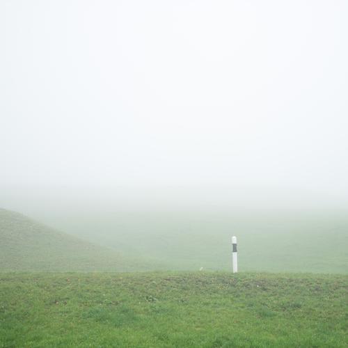 A roadside marker in a wavy meadow landscape in the fog Road marking Fog minimalism Street Meadow crimped green White Gray Black Blank space