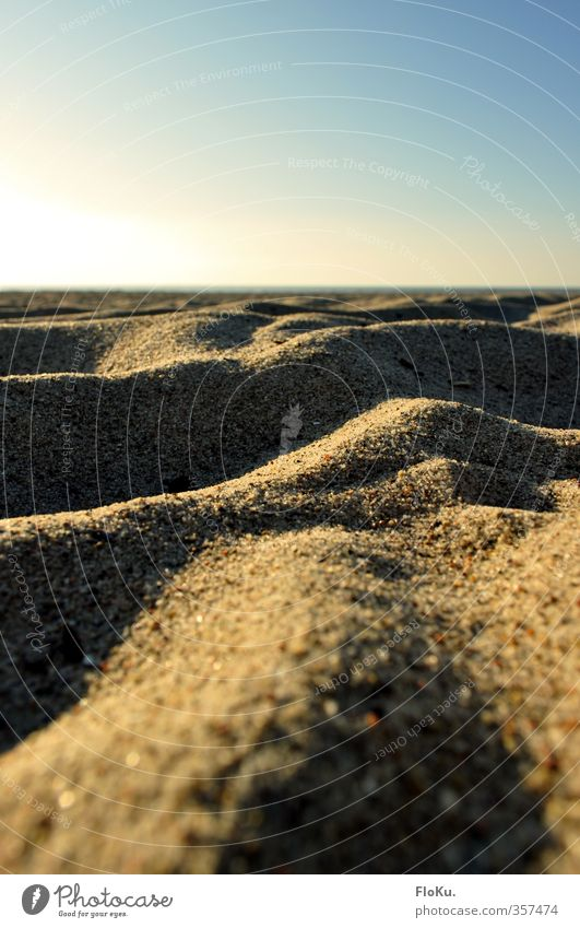 Mini Dunes Vacation & Travel Trip Far-off places Summer Summer vacation Sun Beach Environment Nature Landscape Earth Cloudless sky Sunlight Beautiful weather