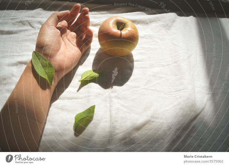 Leaf covering the wrist hand and an apple against a white bed sheet suicide concept suicide awareness conceptual image Suicide victim desperation cinematic