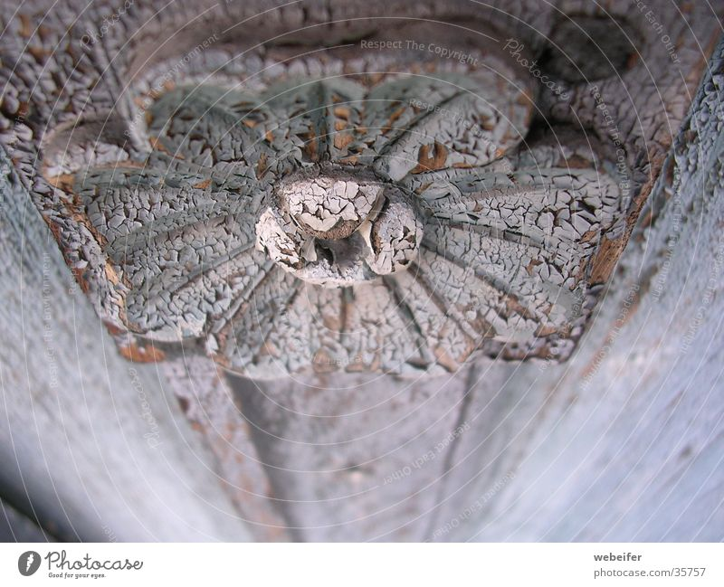 Beauty of decay Light blue Flower Carving Ancient Wood Arts and crafts  Furniture Depth of field Craft (trade) Old