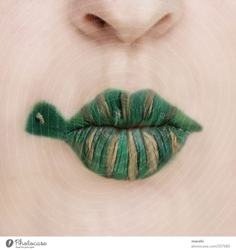 cuirass lips Leisure and hobbies Human being Masculine Feminine Head Face Lips 1 Animal Pet Green Shell Turtle Make-up Wearing makeup Painted Funny Idea