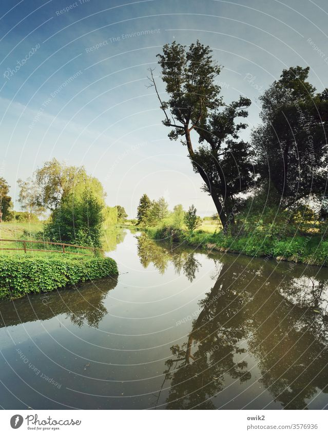 Small Spreewald near Wahrenbrück tree Nature Landscape out Exterior shot Horizon Sky running waters fluid Calm windless Reflection Water reflection